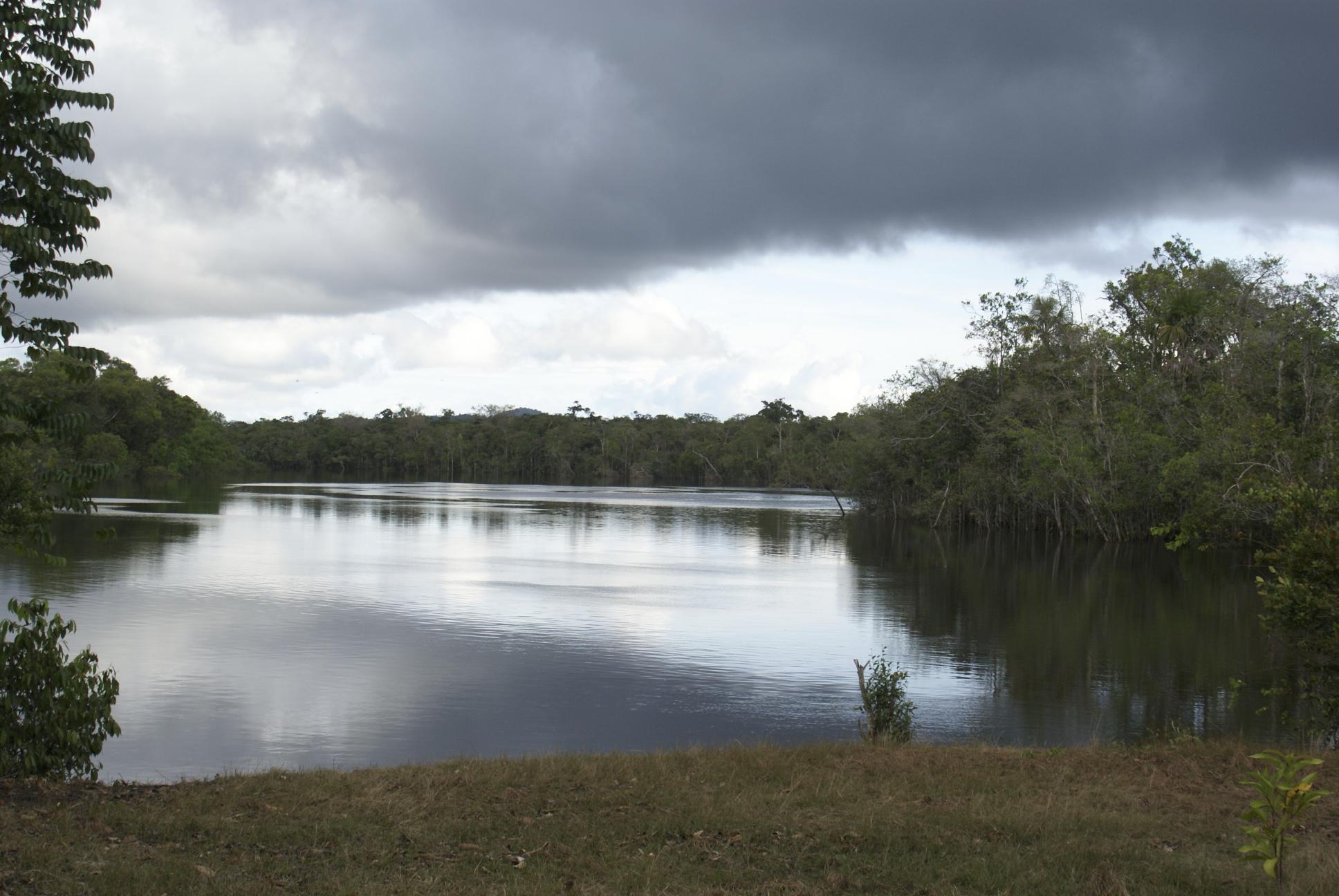 Amazzonia venezuelana