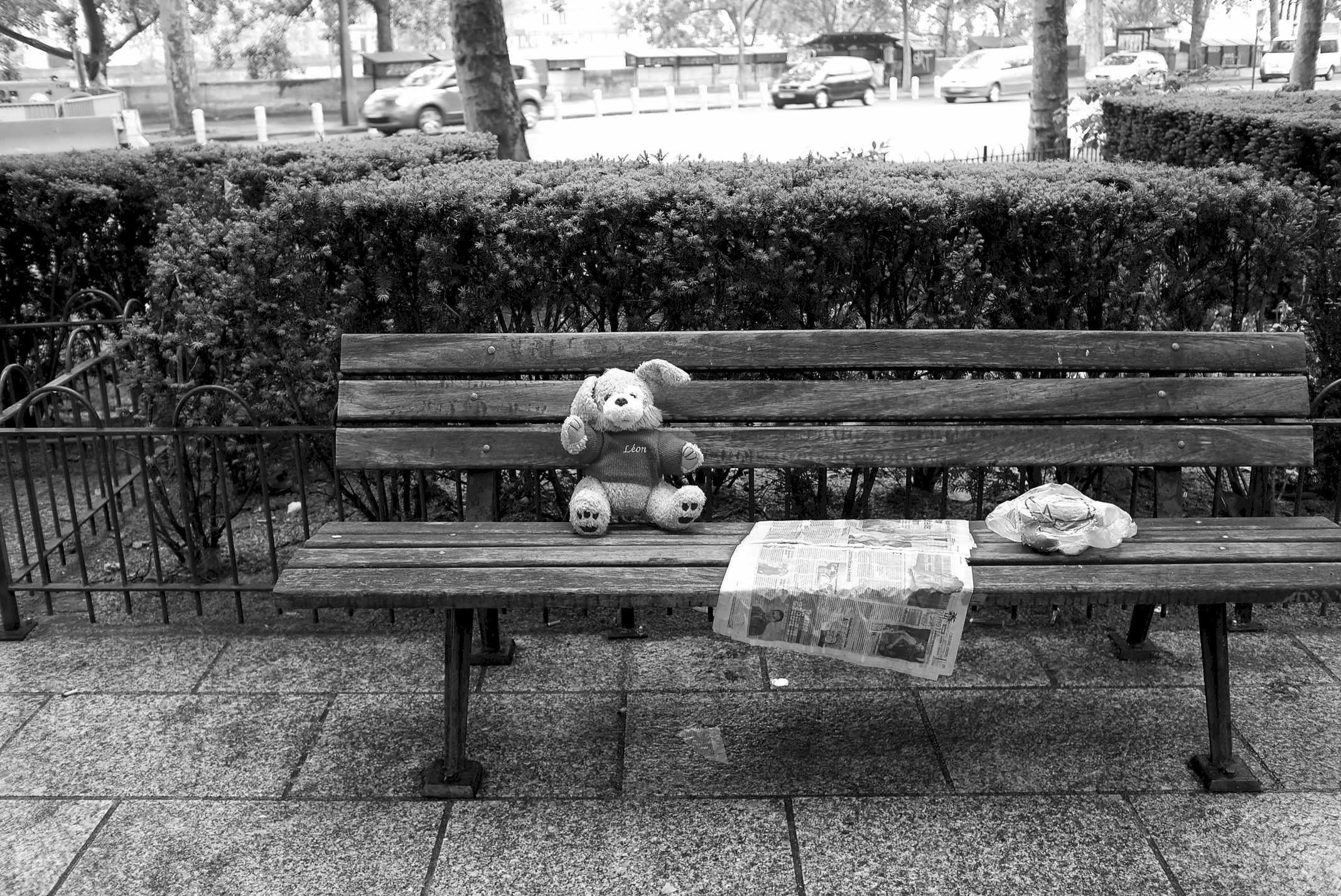 Parigi -  Teddybear