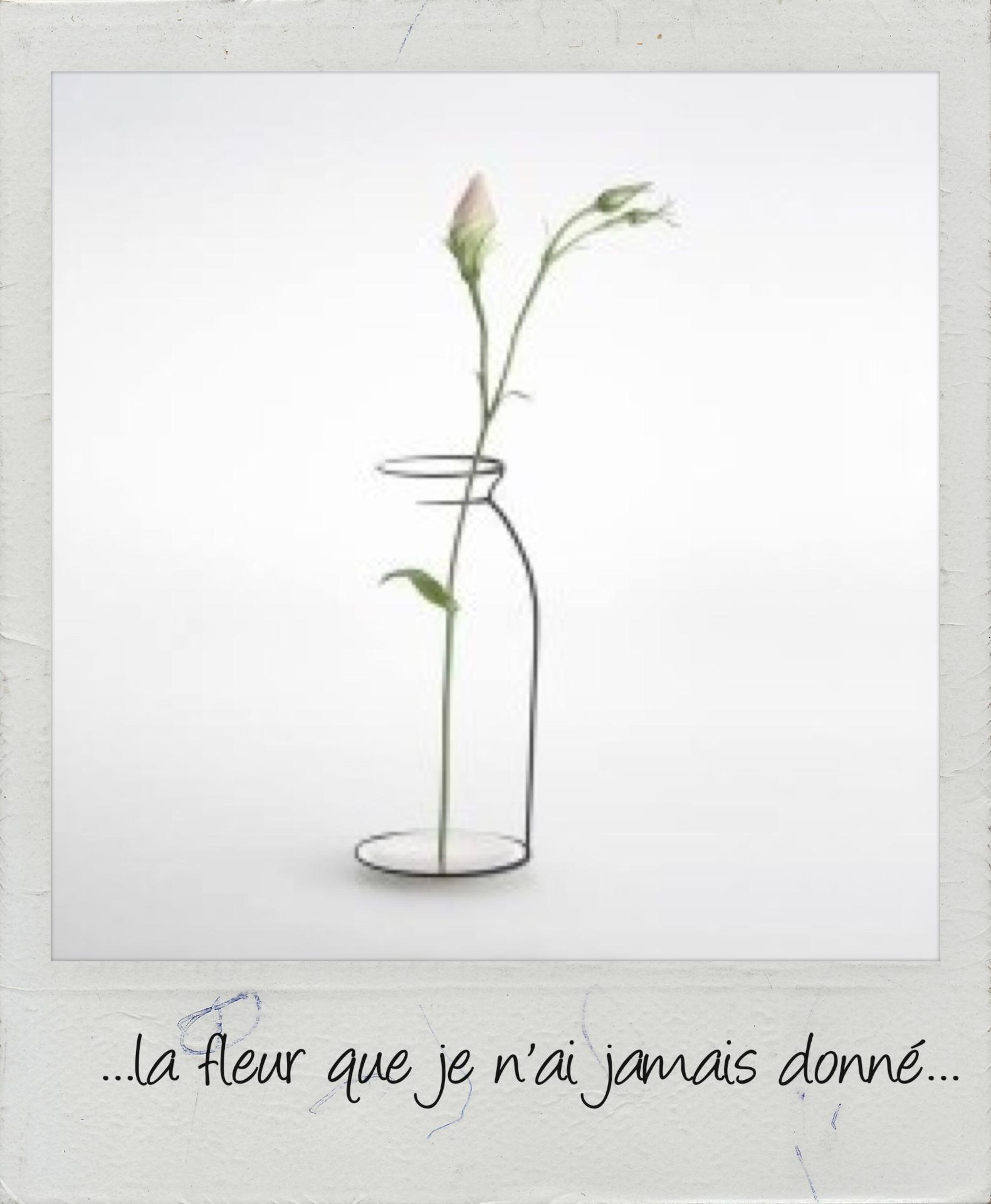 La fleur que je n'ai pas donnèe