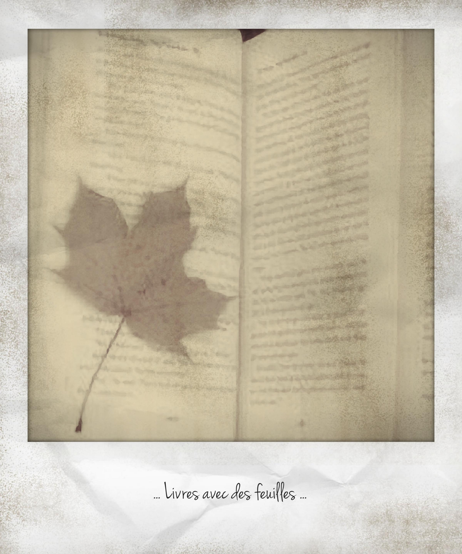 Livre avec des feuilles