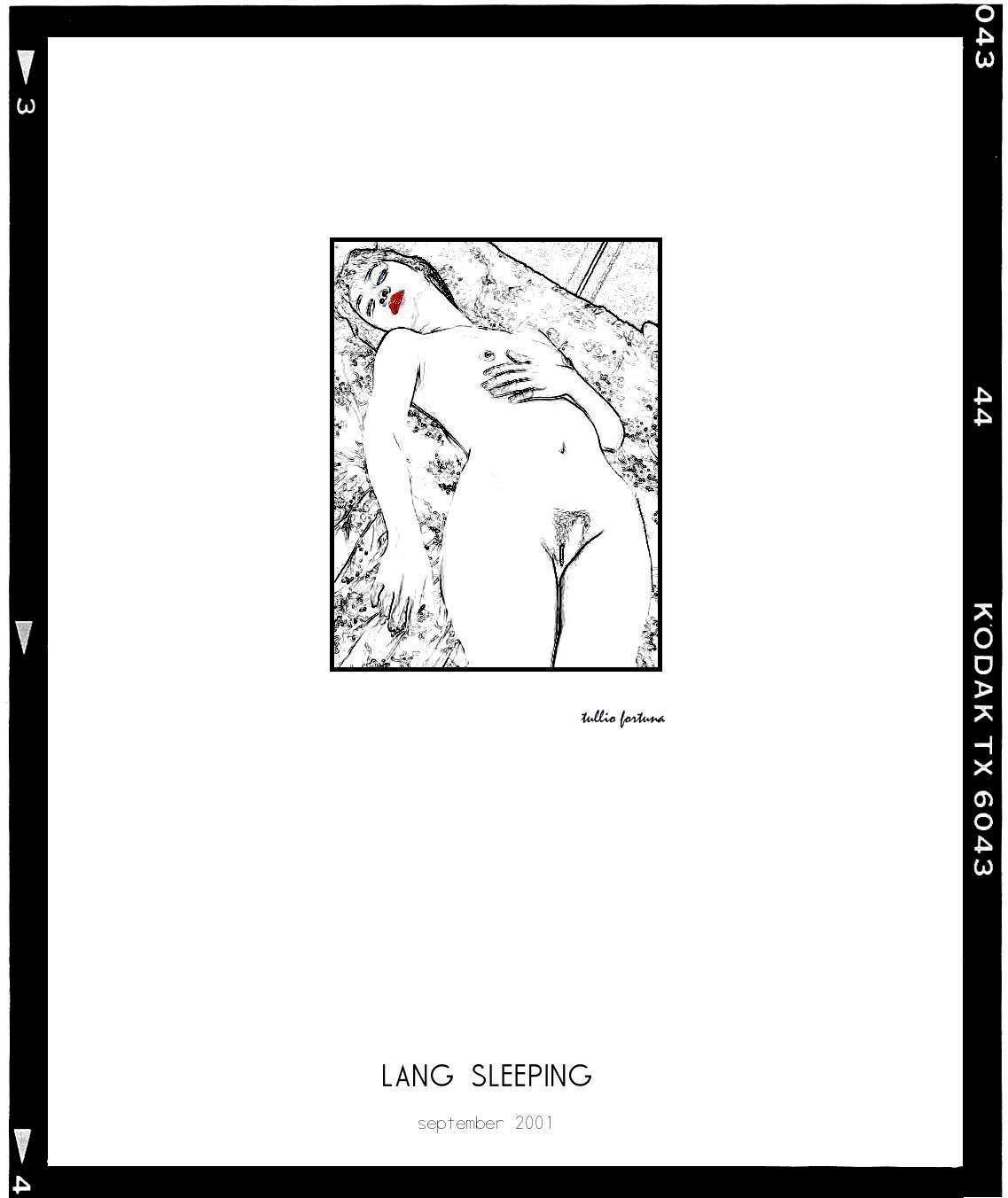 Lang sleeping