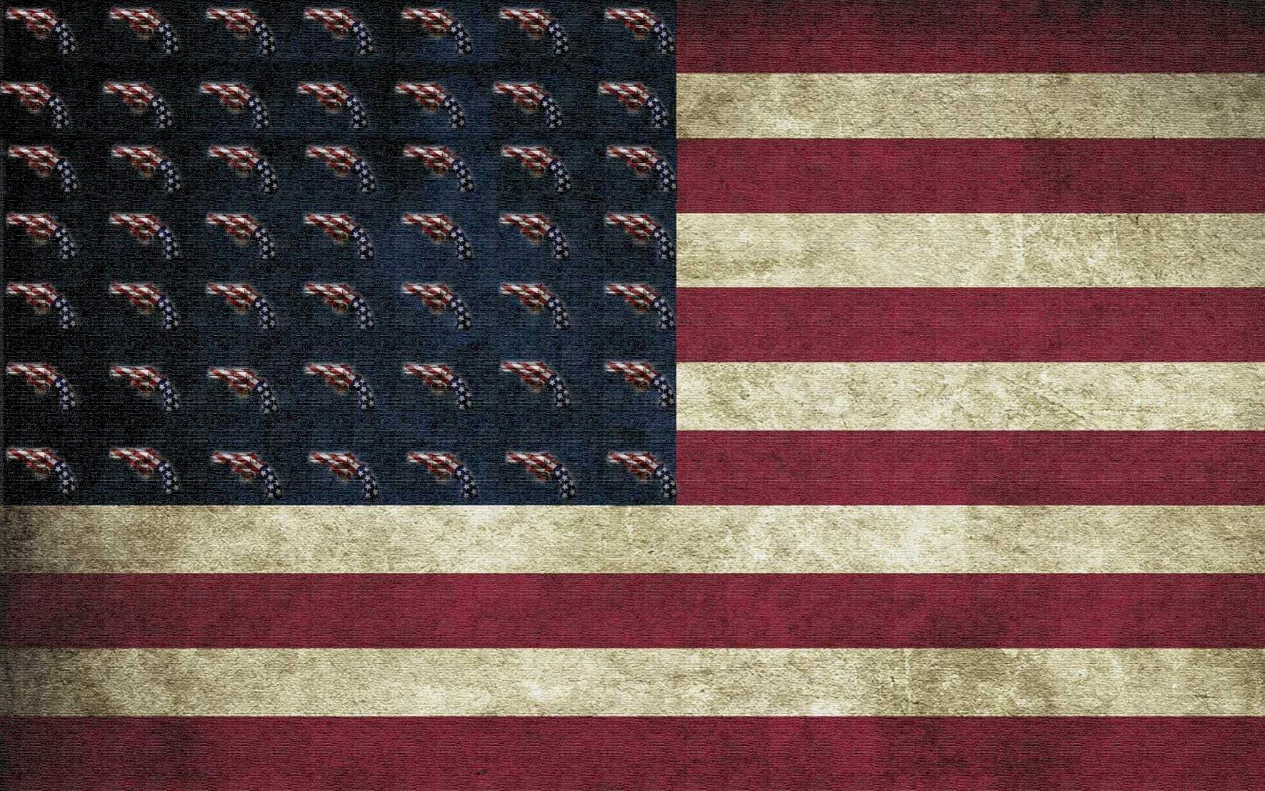 New Amercica Flag